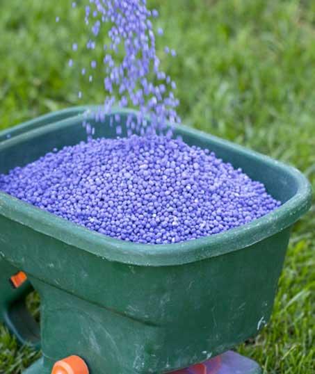 Nunez Lawn Care & Landscaping, Inc. Lawn Fertilization