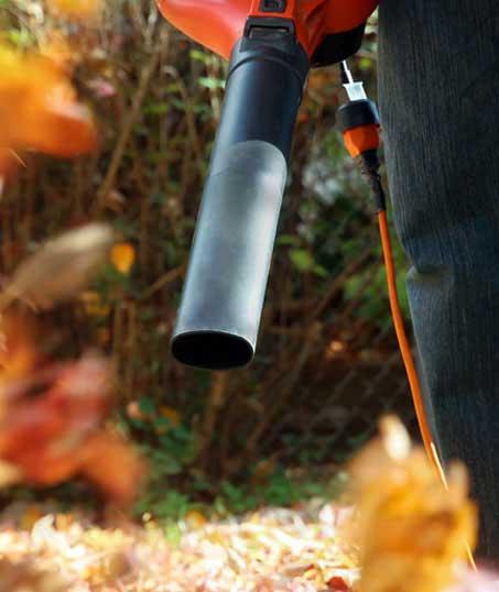 Nunez Lawn Care & Landscaping, Inc. Leaf Removal