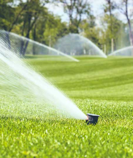 Nunez Lawn Care & Landscaping, Inc. Sprinkler Installation
