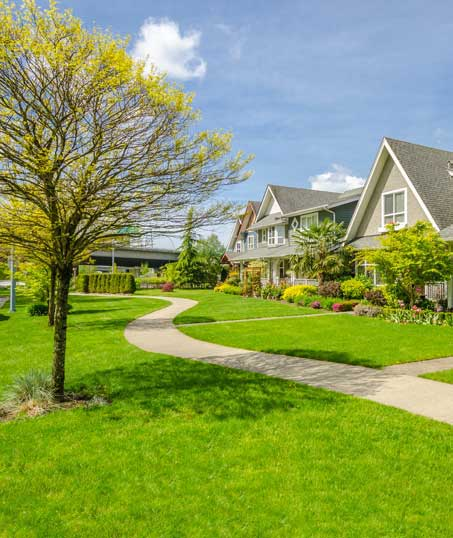 Nunez Lawn Care & Landscaping, Inc. Residential Lawn Care