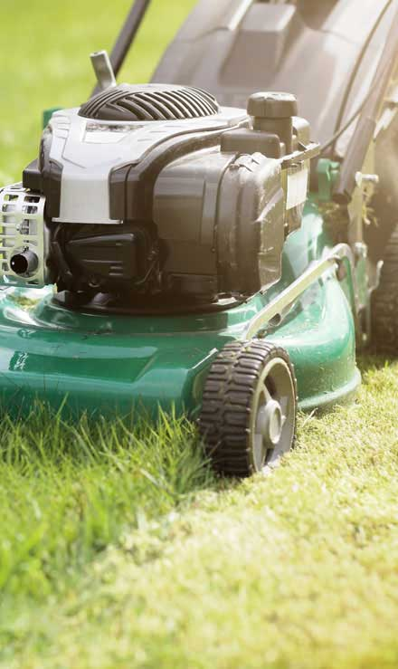 Nunez Lawn Care & Landscaping, Inc. Residential Lawn Mowing